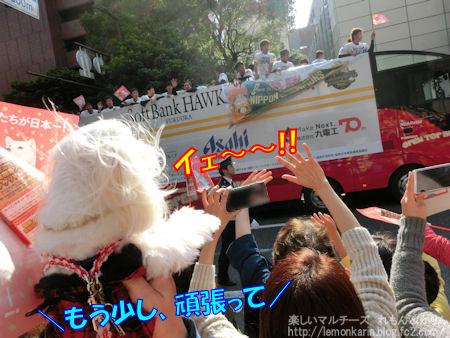 20141127_8.jpg