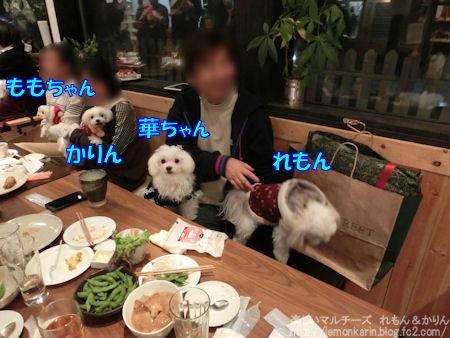 20141214_3.jpg
