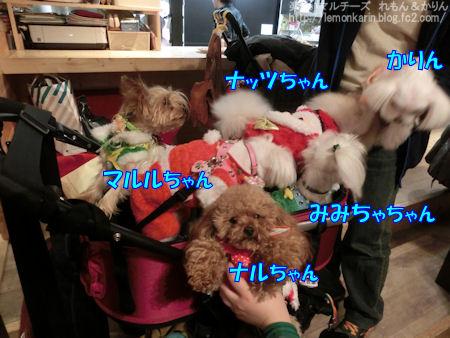 20141214_4.jpg