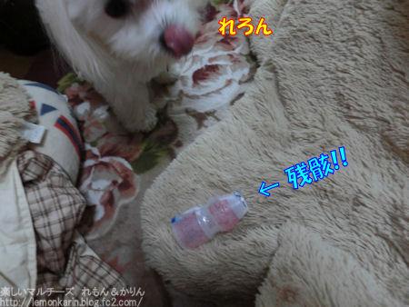 20141218_1.jpg