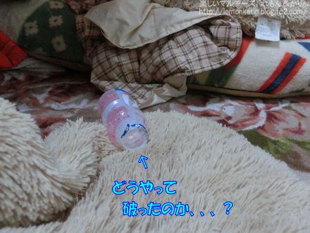 20141218_4.jpg