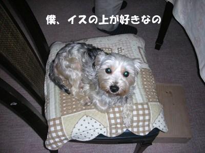 20111122235101fc6.jpg