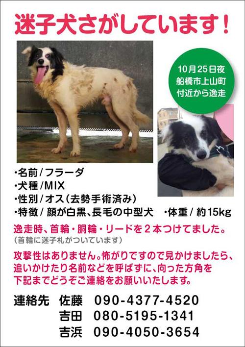 web_furada.jpg