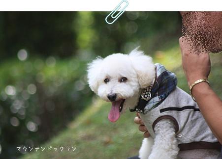 20_20111024230954.jpg