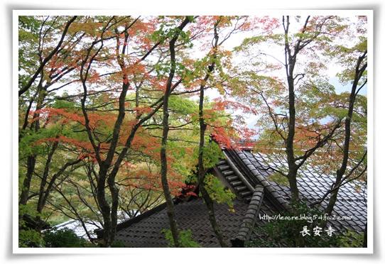 50_20111111134349.jpg