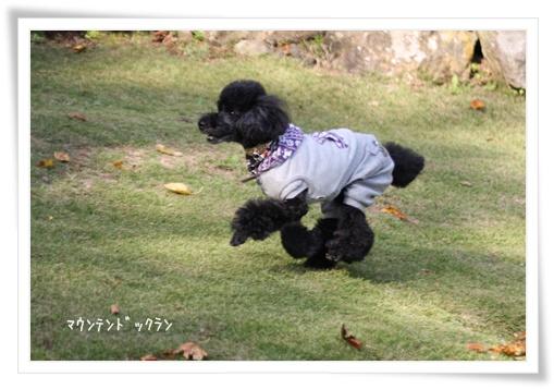 87_20111024230732.jpg