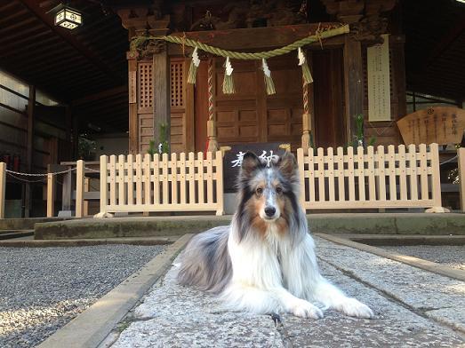 miku青木神社
