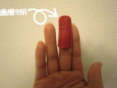 歯磨き用指サック