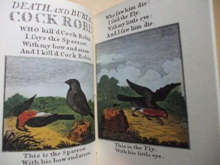 cock robin 2