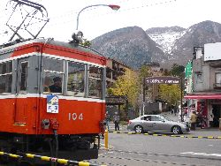 P1030333.jpg