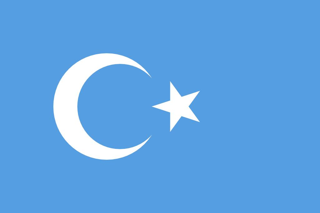 東トルキスタン旗