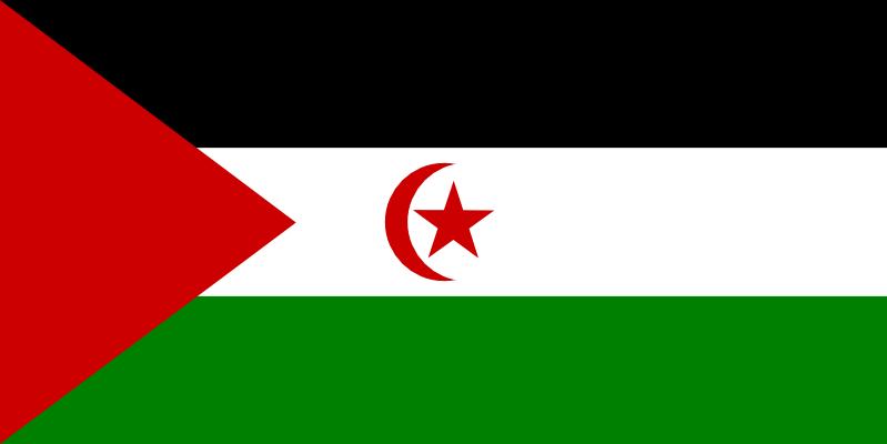 サハラ・アラブ民主共和国旗