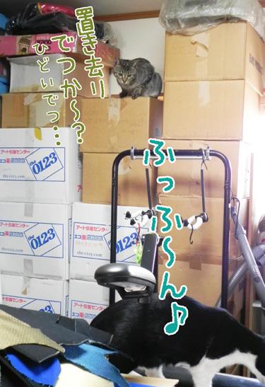 0414_8.jpg
