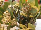 2012_0213_153123-P2132722_convert_20120215133207.jpg