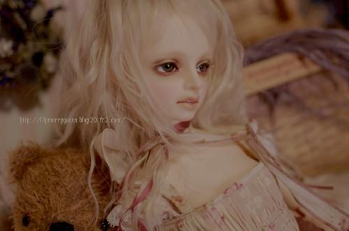 blog2882.jpg