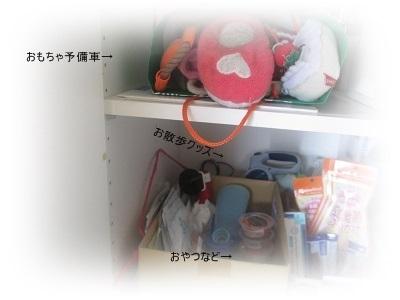 IMG_2422.jpg