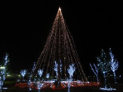 20101224_こころツリー