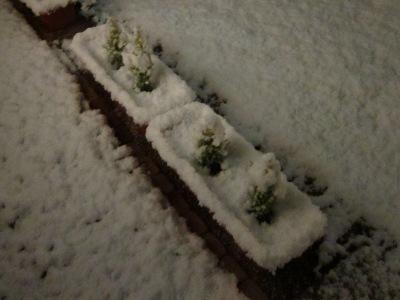20101226_雪の夜2