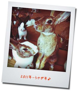 20110101_うさぎ年!