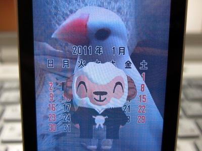 20110103_デカしつじクン!