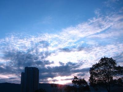 20110111_氷点下の朝