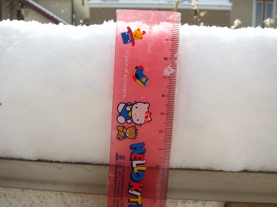 20110116_積雪8cm
