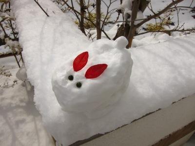 20110116_雪うさぎ
