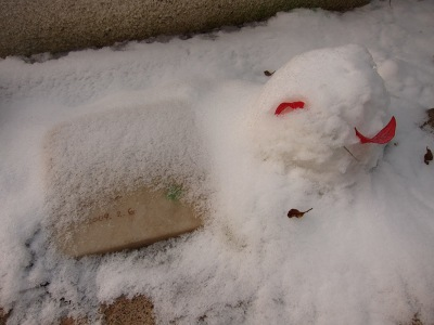 20110118_雪ウサ・・・