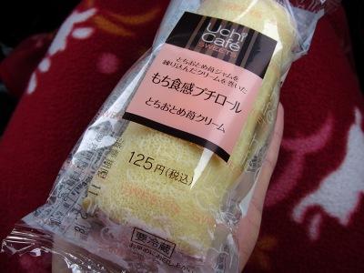 20110217_プチロール