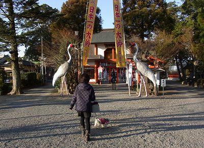 鶴さ~ん!