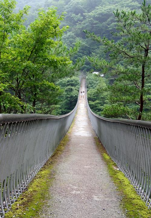 230820  梅ノ木轟吊橋2