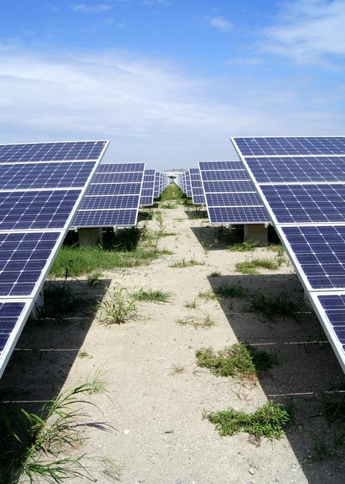 230909 有明ソーラーパワー11