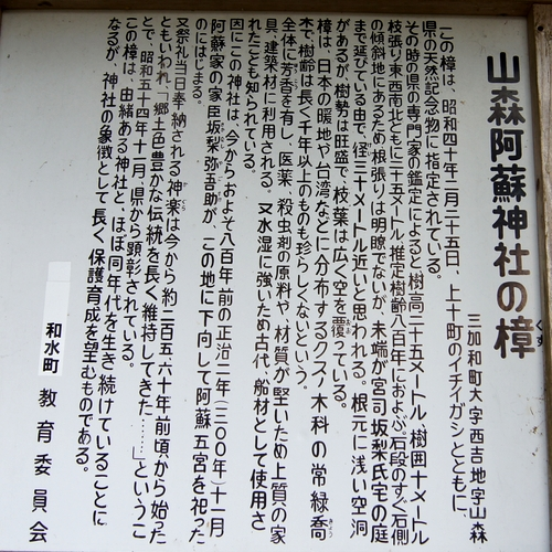 230909 山森阿蘇神社5
