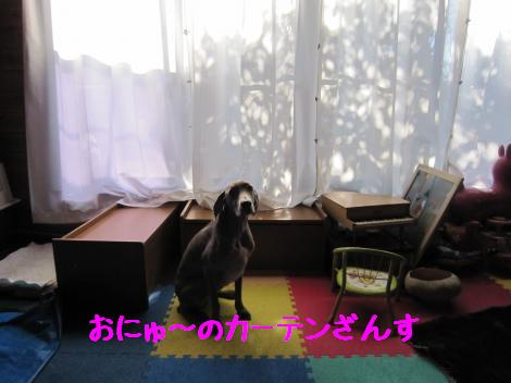 IMG_6039_convert_20101230135424.jpg