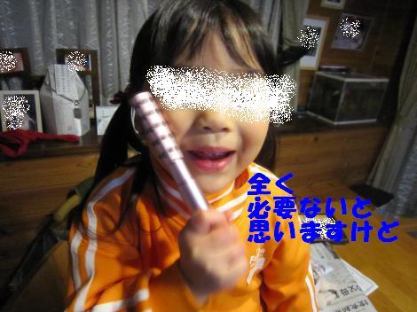 IMG_6179_convert_20101217114749.jpg