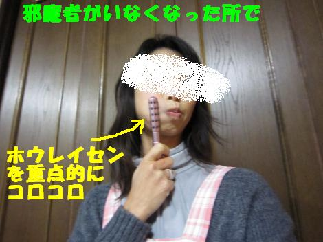 IMG_6199_convert_20101217115231.jpg