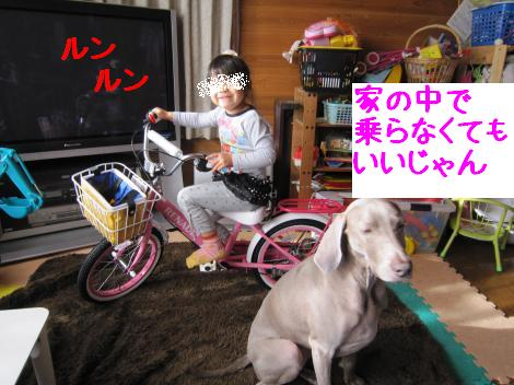 IMG_6396_convert_20101225231532.jpg