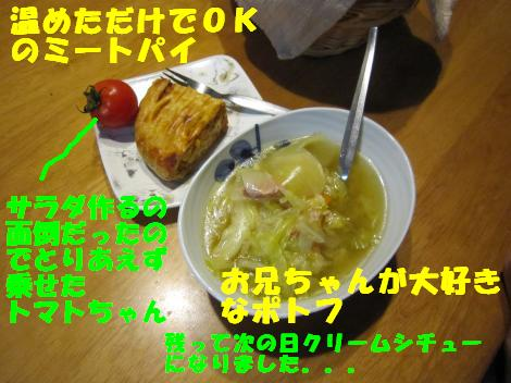 IMG_6637_convert_20110124104514.jpg