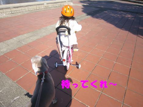 IMG_6647_convert_20110124113415.jpg