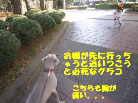 IMG_6649_convert_20110124113444.jpg
