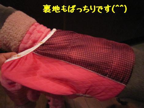 IMG_6842_convert_20110205184615.jpg