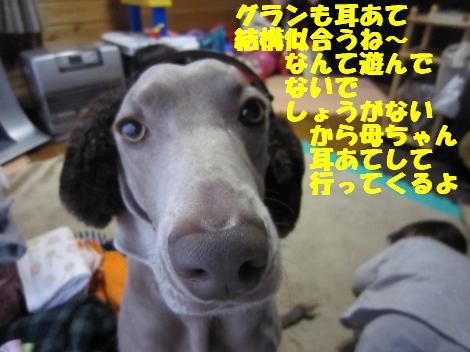 IMG_6902_convert_20110215101005.jpg