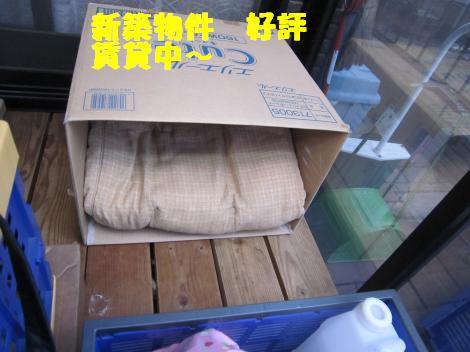 IMG_6949_convert_20110223132405.jpg