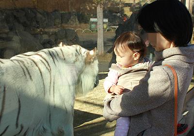 東武動物公園5