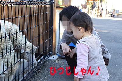 東武動物公園11