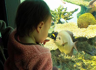 葛西水族館5