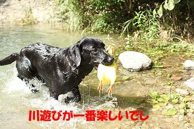 nasu0918-03.jpg