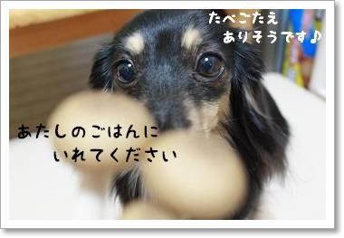 shimejigohan1.jpg