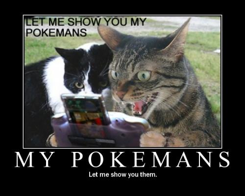 Cat_Pokemon_convert_20111112161841.jpg