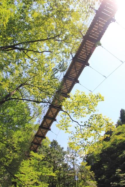 吊り橋は2カ所ぐらいありました。結構揺れます。